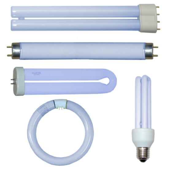 Standard BL368 Lamps  Bulbs