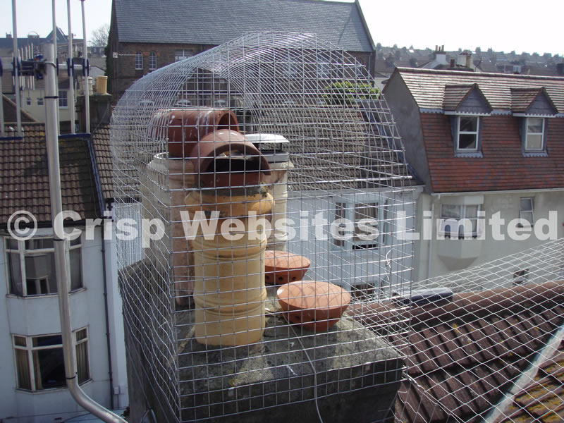 Weldmesh 50mm x 50mm 14G Galvanised Steel Mesh