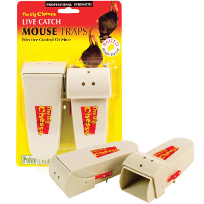 Live Catch Mouse Trap - Twin Pack
