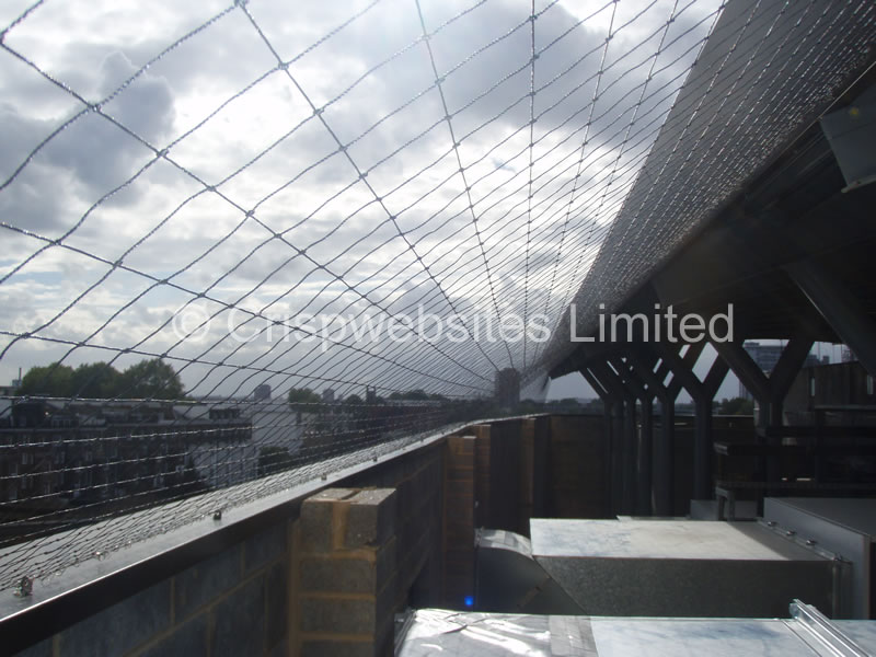Pigeon Netting 50mm Black