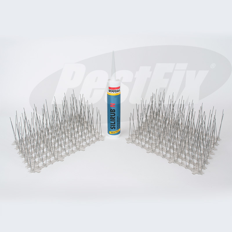 Seagull Spikes in Stainless Steel 5 Metre Kit FREE Adhesive